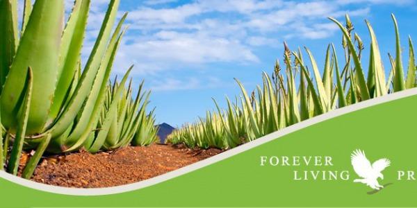 Forever Living – Historia marki